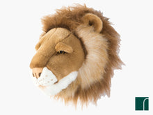 Cesar Lion Head Wild and Soft