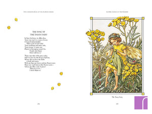 Complete book of flower fairies inside