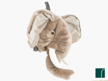Elephant back pack