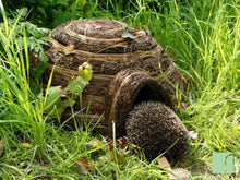 Hedgehog Igloo