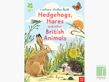 Hedgehog Sticker Book