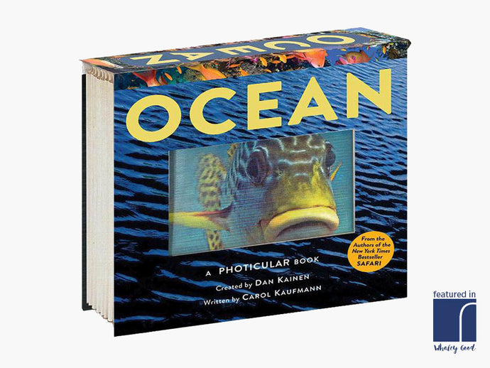 Ocean - A Photicular Book