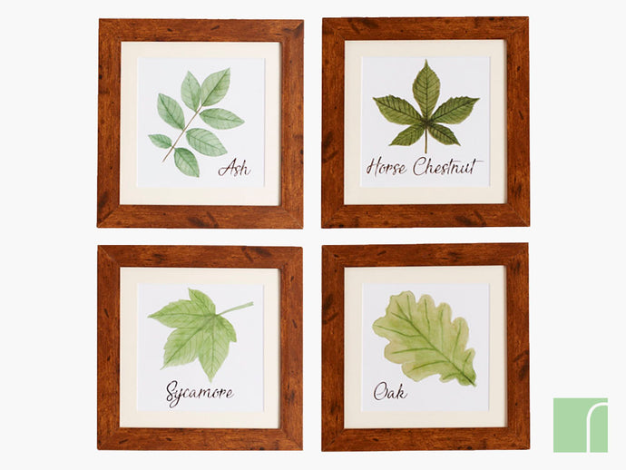Set Of 4 Woodland Leaf Prints