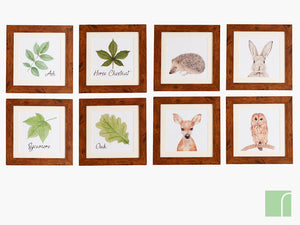 Set of 8 Woodland Images