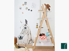 Tipi Bookcase