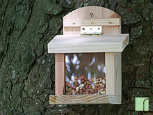 Wooden Squirrel Feeder on tree