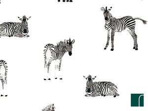 Zebra-seregeti-wallpaper-lilipinso