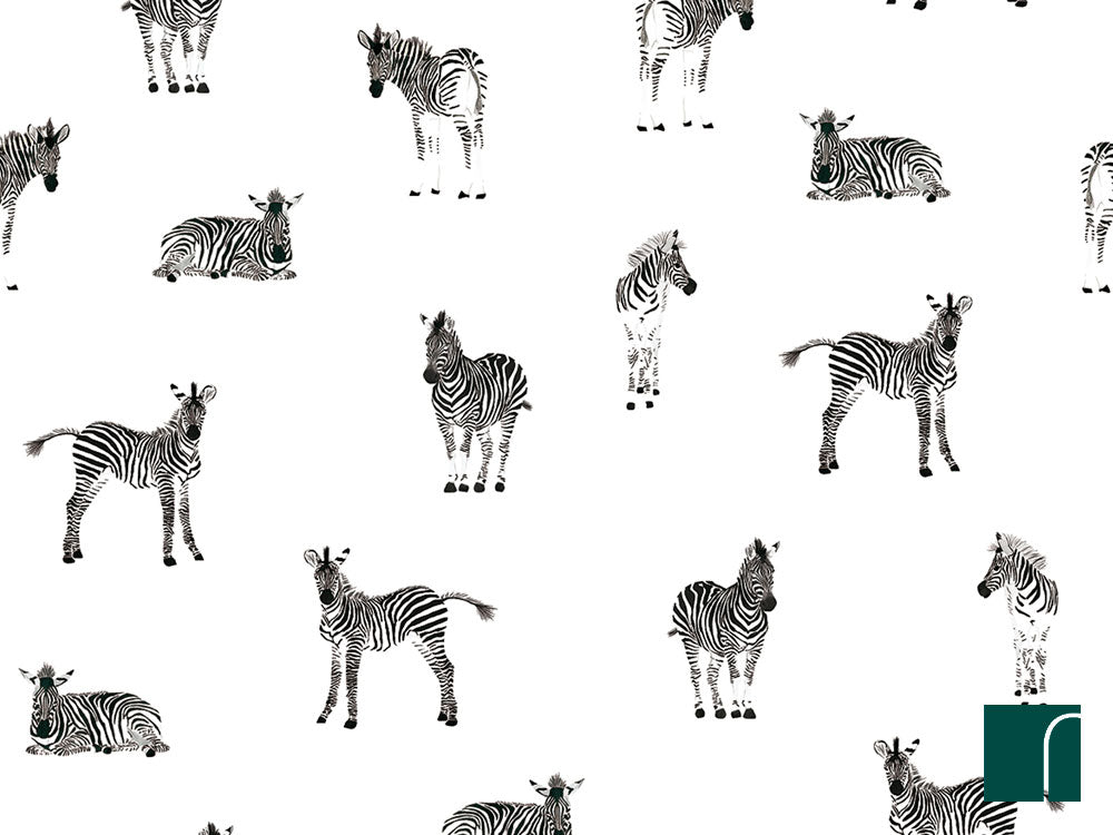 Zebra-wallpaper