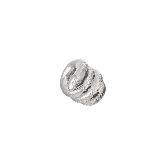 Coiled Snake Charm