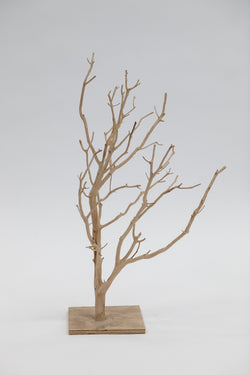 Manzanita Wood - Coastal
