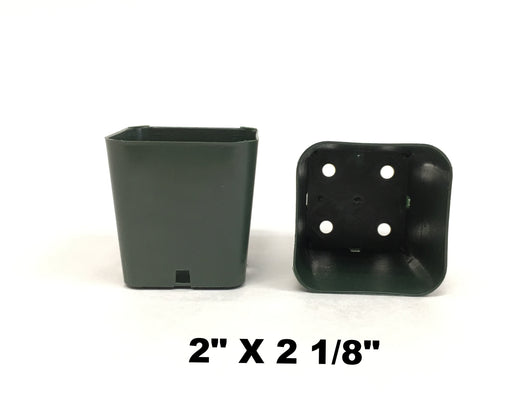 Square Plastic Pots - Green
