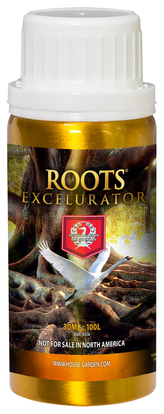 Roots® Excelurator Gold - from House & Garden