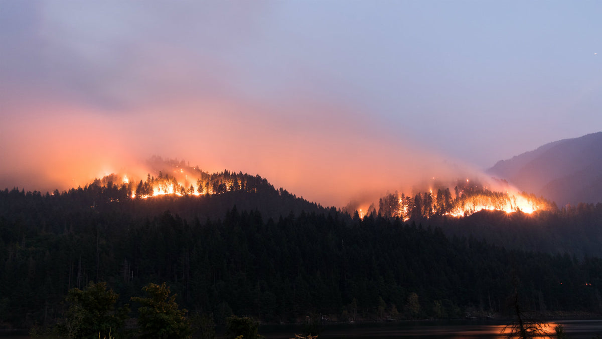 The Eagle Creek Fire And What Can We Do About It