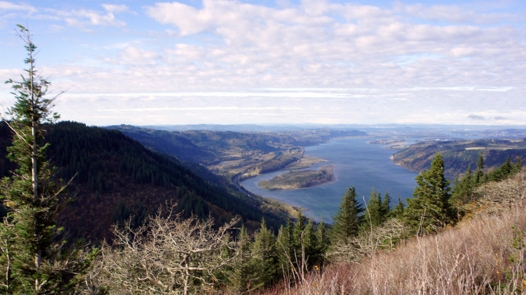 The Columbia Gorge in all its glory