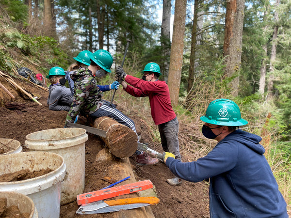 Several trail work volunteers wearing boots, green hard hats and gloves use a variety of hand tools to saw logs and rebuild a section of trail along the Oregon Coast Trail in Northwestern Oregon. They are surrounded by green foliage and a lot of brown mud! trailkeepers, oregon, northwest, pacific northwest, oregon coast, oregon coast trail, trail building, trail work, volunteer, trailkeepers of oregon