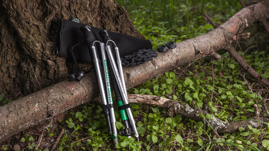 Vertex Carbon and EVA trekking poles