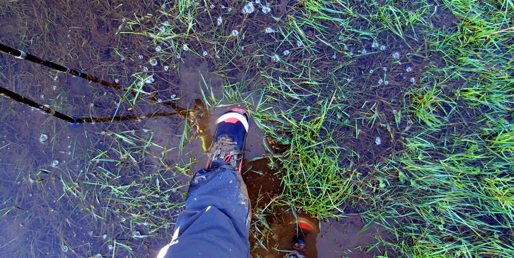Trail shoes in water