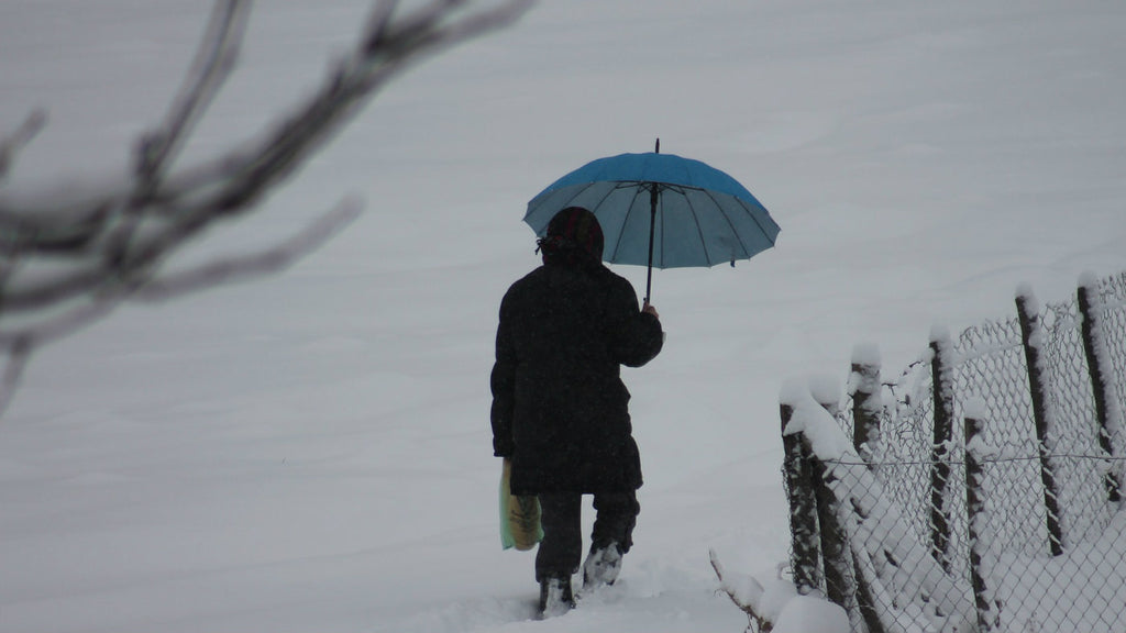 person walking in snow with umbrella