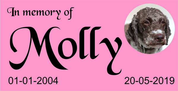 Pet plaque, Personalised Pet Plaque, RIP name plate, Dog plaque, Cat Plaque