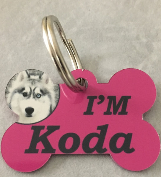 Dog Tags / Pet Tags
