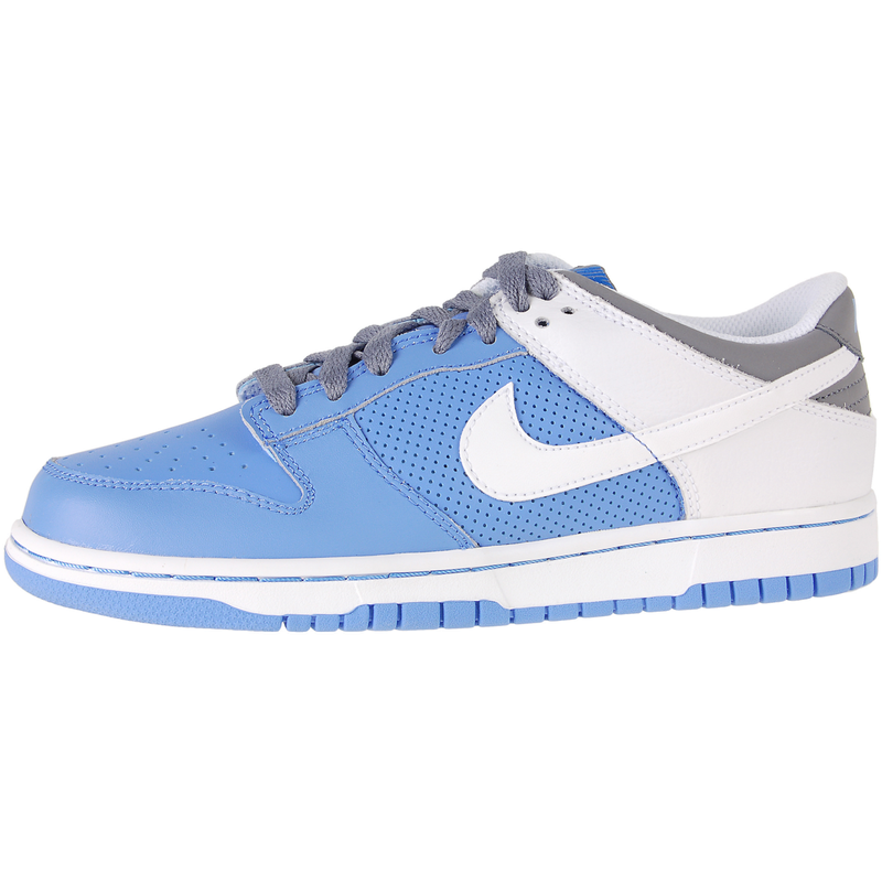 Nike Dunk Low UNC (GS) 2008