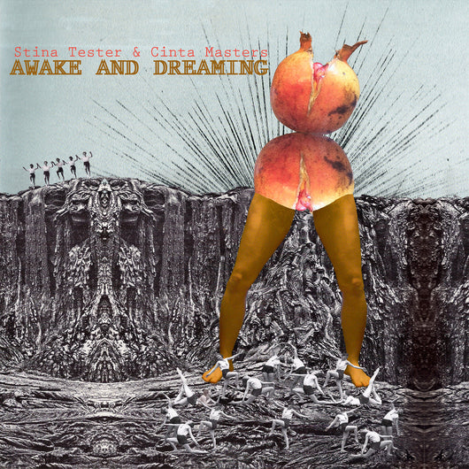 <b>STINA TESTER & CINTA MASTERS <br>Awake and Dreaming LP</b>