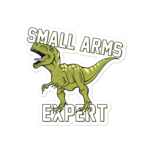 Image of Small Arms Expert Sticker