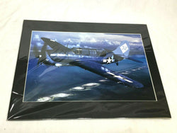 WWII Navy Douglas SBD-5 Dauntless Dive Bomber 16x20 Photo Picture Color Matted