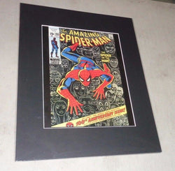 1971 Marvel Comics The Amazing Spider-Man #100 Anniversary Poster Picture 16x20