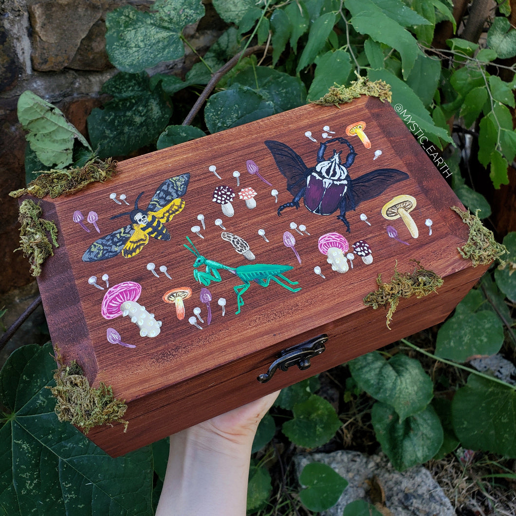 Mantis Insect & Mushroom Hidden Gem Box