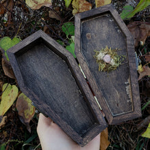 Brown Moon Phase Hidden Gem Coffin Box