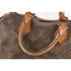 Louis Vuitton Speedy 25 Bag