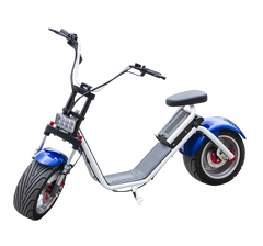 EcoRider Electric Scooter