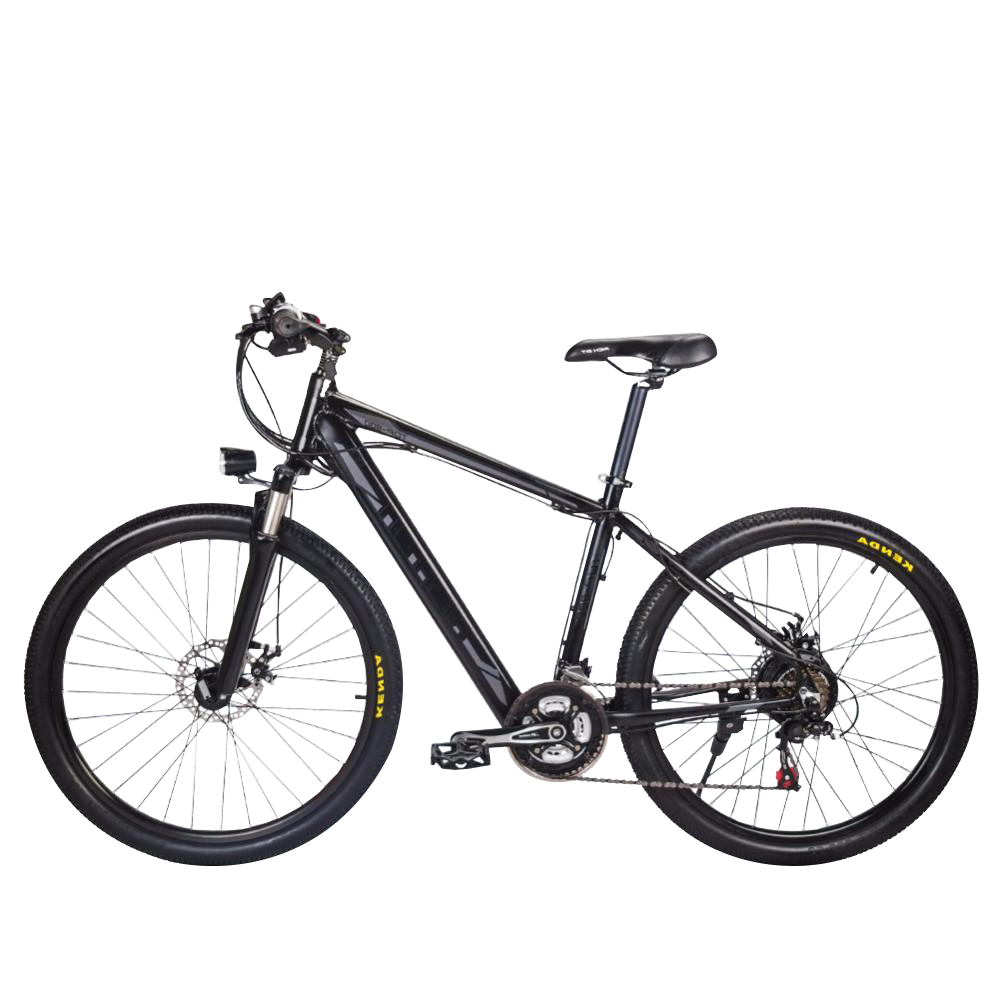 Rich Bit Top-800 Electric Bike, Black