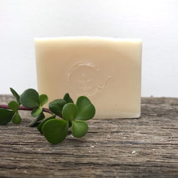 Pure Soap - Coconut Cream