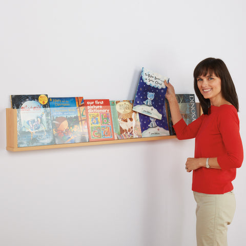 Shelf Style Wall Mounted Literature Display.