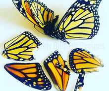 Real Butterfly Pendants