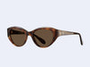 Garrett Leight Del Rey (Feather Tortoise with Semi-Flat Sienna Lens)