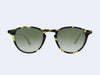 Garrett Leight Hampton Sun (Matte Tokyo Spotted Tortoise - Matte Black with Gold layered Mirror Lens)
