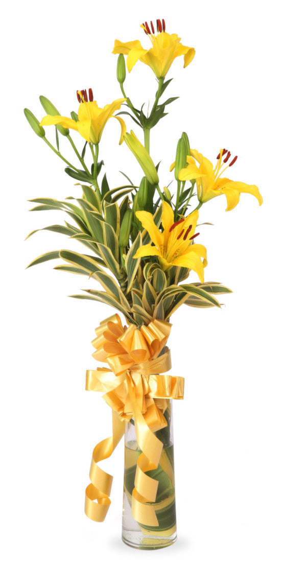 Yellow Lilies In A Glass Vase Shamuns Flowers