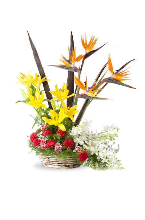 Arrangement of exotic flowers in a basket | Shamuns Flowers