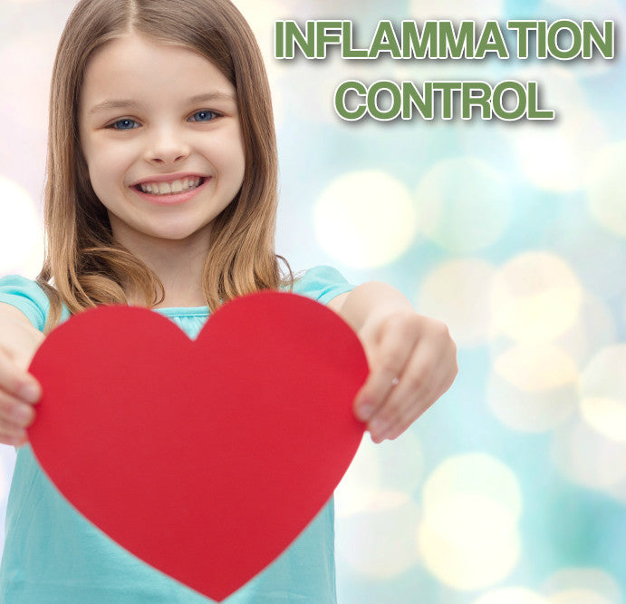 Anti-inflammatory Health Supplements