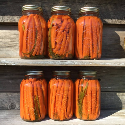 Home Grown Pickled Carrots
