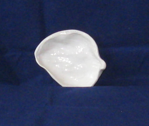 White Pottery Ring Dish