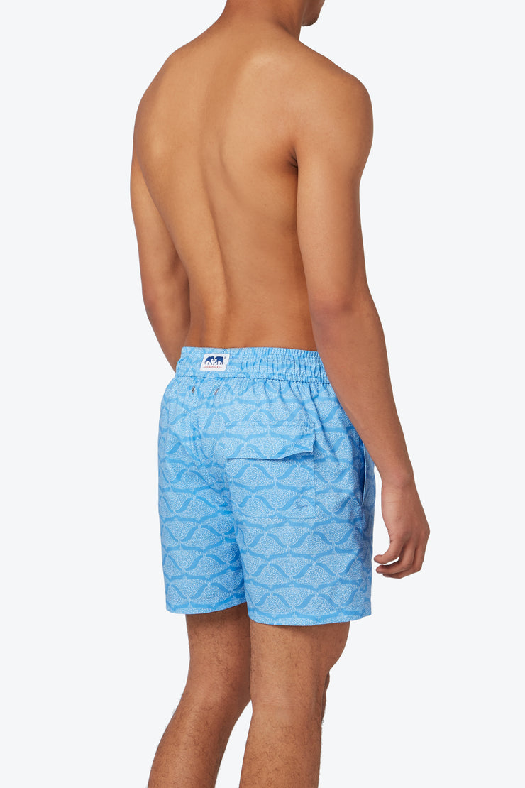 'Ray Writing' Staniel Swim Short