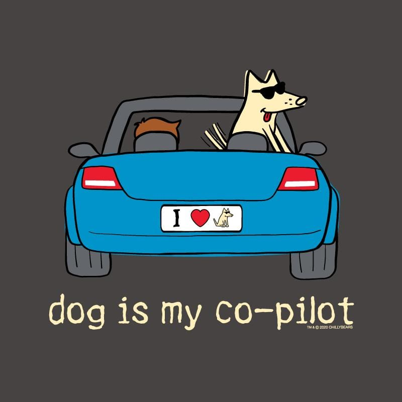 Dog Is My Co-Pilot  - Ladies Curvy V-Neck Tee