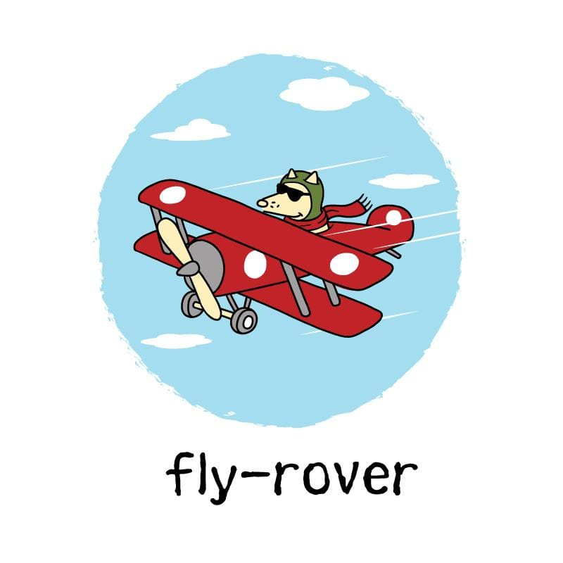 Fly-Rover - Coffee Mug