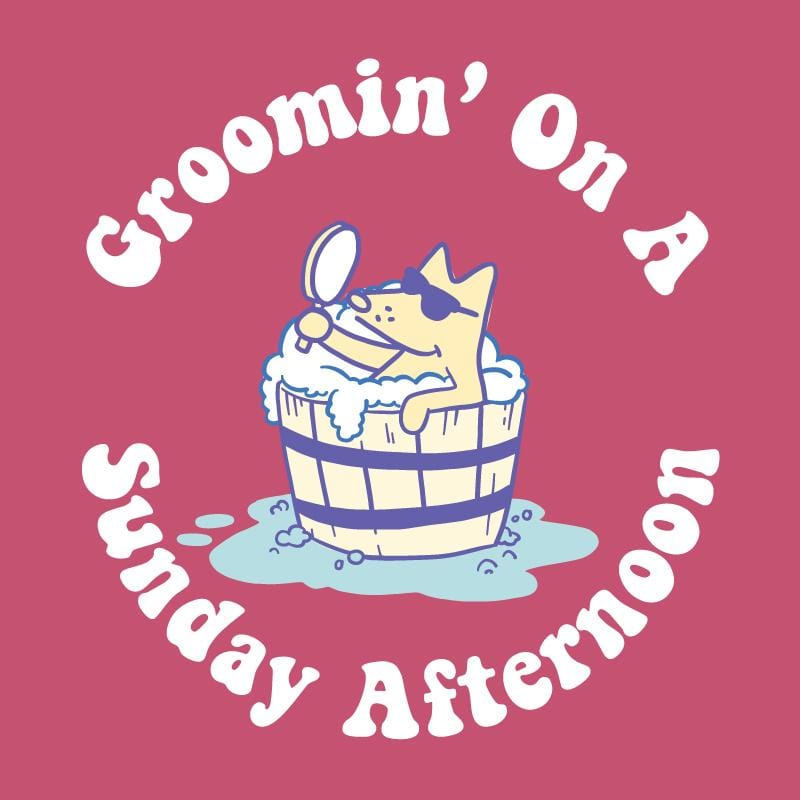 Groomin' On A Sunday Afternoon - Lightweight Tee