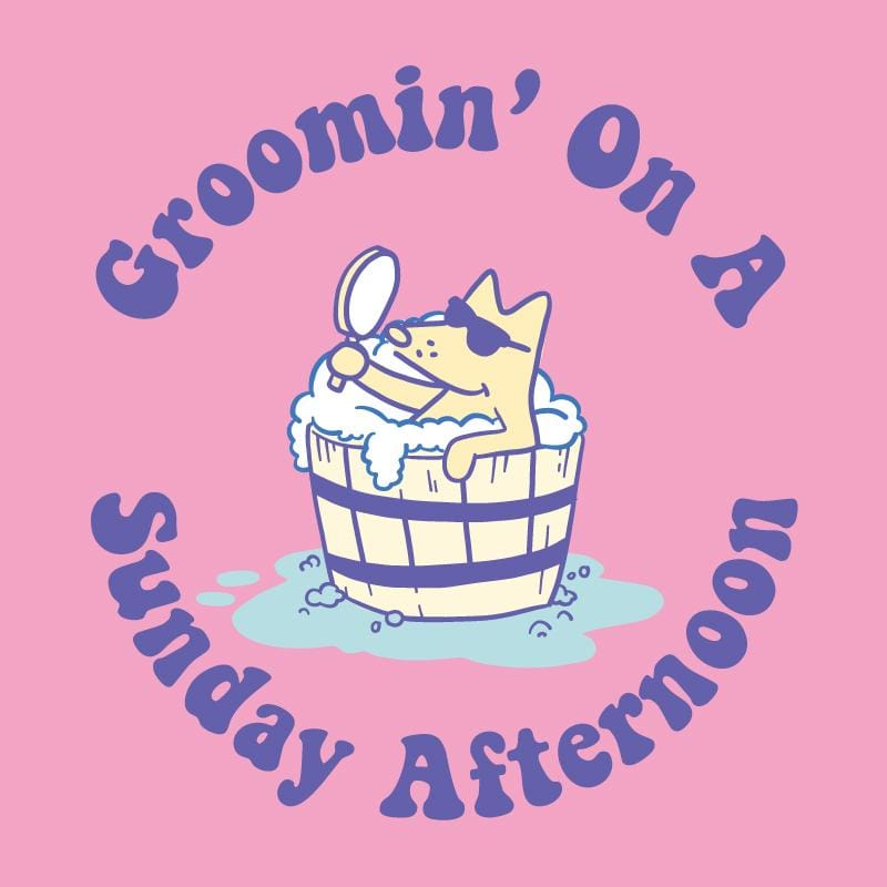 Groomin' On A Sunday Afternoon - Ladies T-Shirt V-Neck