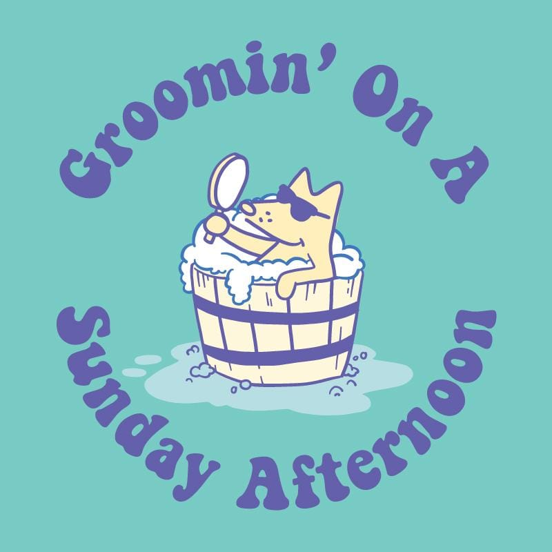 Groomin' On A Sunday Afternoon - Ladies Curvy V-Neck Tee